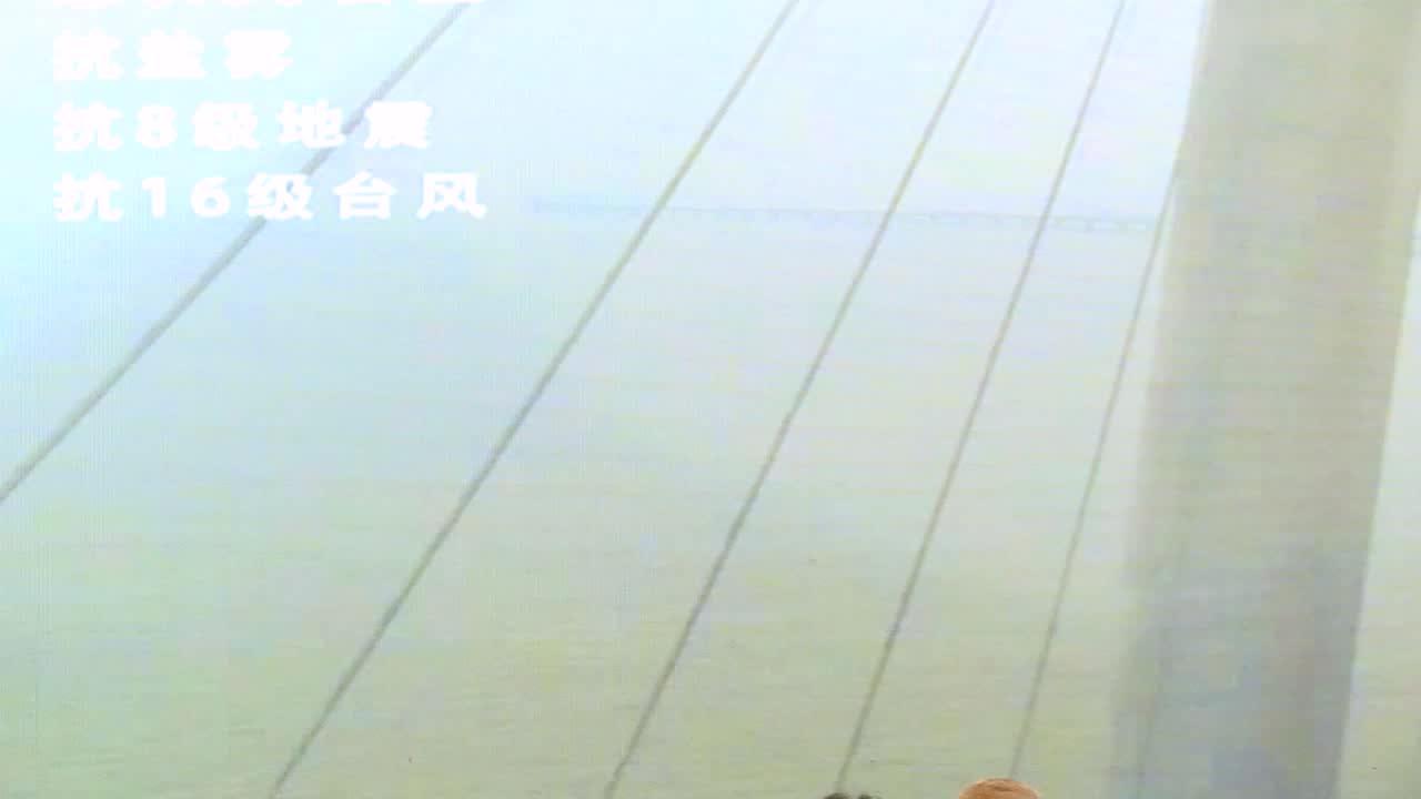 【视频报告 2018】上海三思许礼副总经理:智慧照明整体方案铸就港珠澳大桥经典
